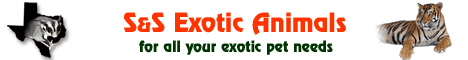 S&S Exotic Animals, Inc.